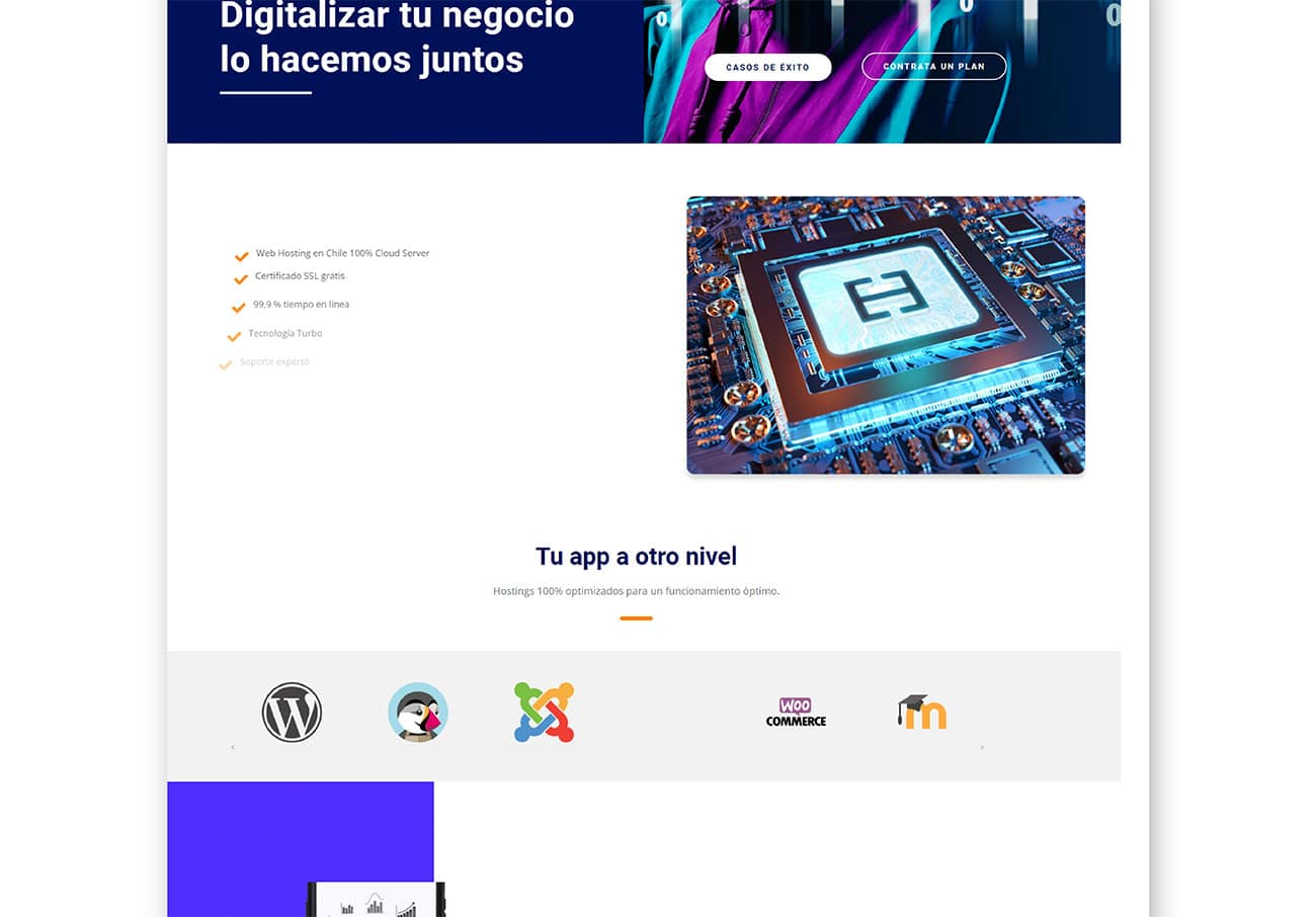 agencia-esaonda-hostingnet-web-diseno-marketing6