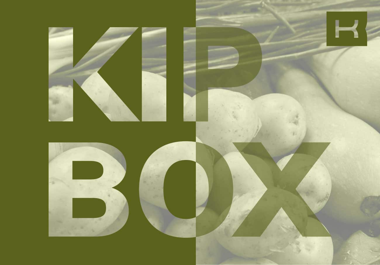 agencia-esaonda-kipbox-web-diseno-marketing1